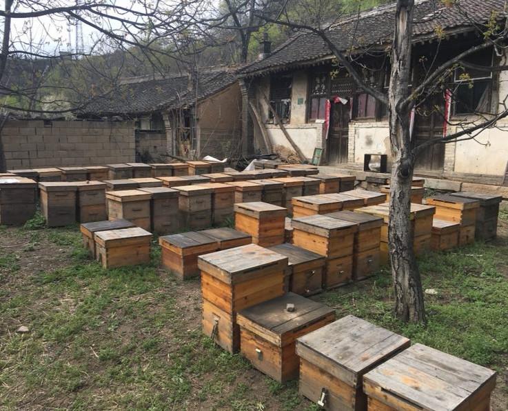響應電商精準扶貧,方家鋪子造訪平石頭村